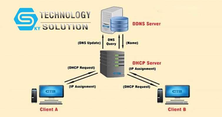 dynamic-dns-la-gi-skytech.company-2